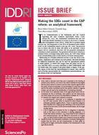 Cadre analytique pour une réelle prise en compte des ODD dans la réforme de la PAC