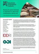 Relever le défi global de l'adaptation en prenant en compte les risques climatiques transfontaliers