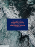 Strengthening Monitoring, Control and Surveillance in Areas Beyond National Jurisdiction