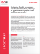 Designing flexible governance for climate adaptation pathways in small islands: insights from multiple case studies