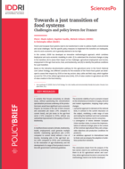 Towards a just transition of food systems - Challenges and policy levers for France