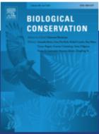 Un indispensable plan d'action pour les récifs coralliens