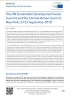 The UN Sustainable Development Goals Summit and the Climate Action Summit, New York, 23-25 September 2019