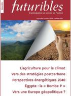 Prospective des transitions énergétiques. Entre modélisation économique et analyse des scénarios stratégiques