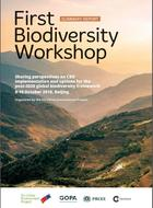 Perspectives on CBD implementation and options for the post-2020 global biodiversity framework