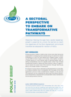 A Sectoral Perspective To Embark on Transformative Pathways