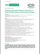 Establishing an Expert Advisory Commission to assist the G20's Energy Transformation Processes