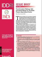 Transformation Pathways And Investment Needs For The Multi- Purpose Agricultural Sector