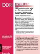 SDG implementation: what  are the countries doing?