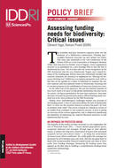 Assessing funding needs for biodiversity: Critical issues
