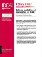 Defining market-based approaches for REDD+