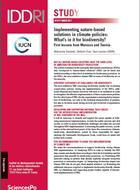 Mise en œuvre des SFN (solutions fondées sur la nature) dans les politiques climat : enjeux pour la biodiversité