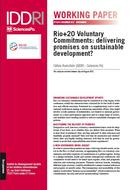 Rio+20 Voluntary Commitments: delivering promises on sustainable development?