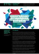 Harnessing EU external cooperation to boost ambitious and coherent climate action