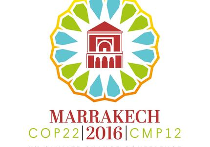 COP22 review: what international cooperation exists on climate?