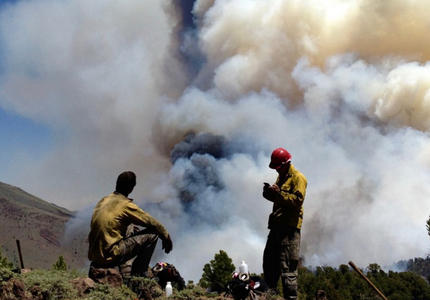 L'Australie en flammes : impacts climatiques et réponses politiques