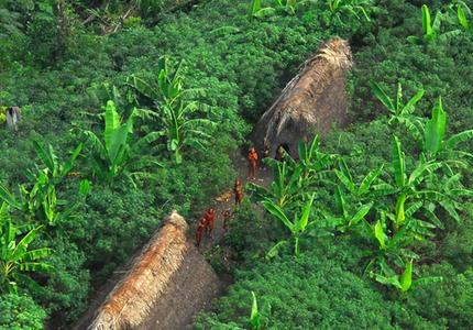 Comment faire plus pour les chefs indiens d'Amazonie ?