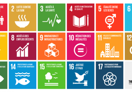 Roadmap for the implementation of the SDGs in France: progress report