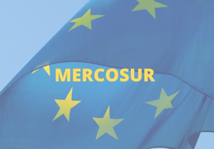 The EU-Mercosur trade agreement: can a trade treaty be greened?