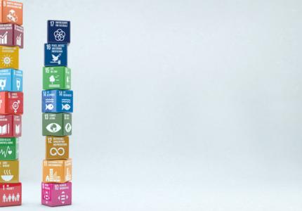 Comment aligner relances nationales post-Covid-19 et Objectifs de développement durable ?