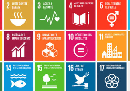 SDG implementation: France accelerates