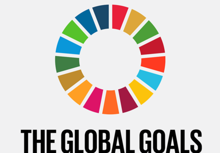 What to expect from the first SDG Summit?
