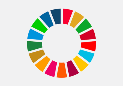 The first four years of SDG implementation: restoring the backbone of the 2030 Agenda