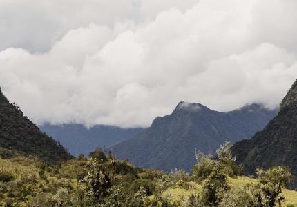 Un statut de protection pour l'Amazonie?