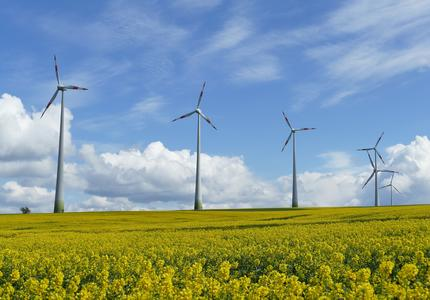 Le Haut Conseil pour le Climat est nécessaire mais n'est pas la réponse aux gilets jaunes