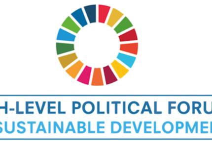 Revue du Forum politique de haut niveau dans le cadre de l'Agenda 2030 : quelles opportunités pour le Cadre mondial sur la biodiversité pour l'après-2020 ?
