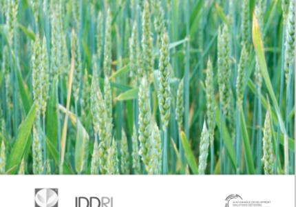 Trajectoires de transformation vers plus de durabilité pour le secteur agricole : comment les élaborer ?